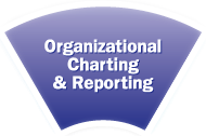 Organizational Charting Software
